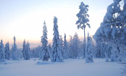 Geschikte kleding voor Lapland!