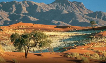 Bezienswaardigheden in Namibië