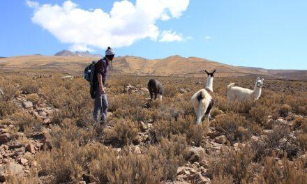 6 dingen die je leert als je door Zuid-Amerika backpackt