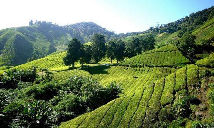 Ontdek de prachtigste plekken van Zuidoost-Azië