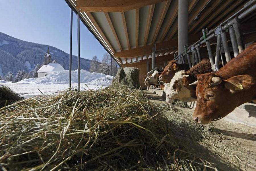 Boerderij in Zuid-Tirol